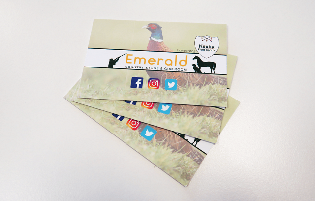 Agrigem emerald business cards visual print and design